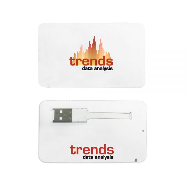 Business Card USB 2.0 Flash Drive - 1GB