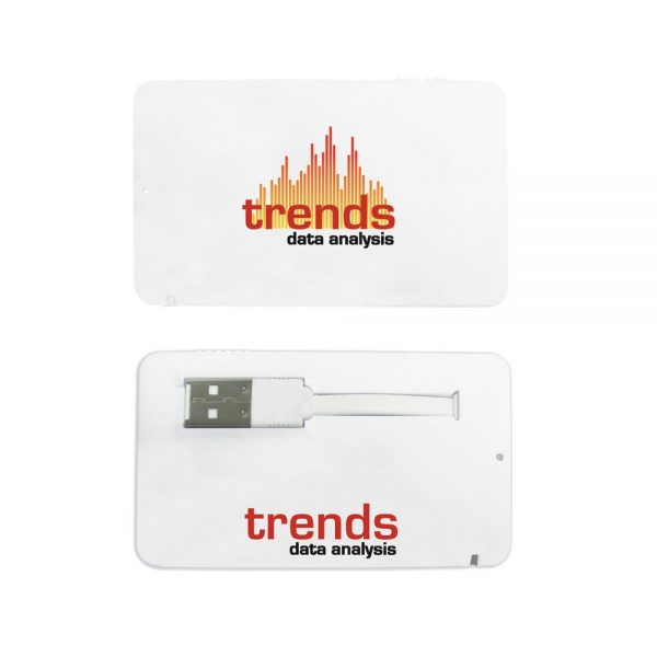 Business Card USB 2.0 Flash Drive - 4GB